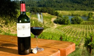 wine 300x181 Winery Marketing: How to brand your Wine and Vineyards